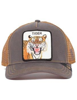 Goorin Bros Gorra Hombre Tigre Eye Of The Tiger Marron